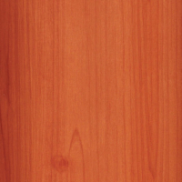 1380_Castaway Commons_SINGLE STAINED CEDAR
