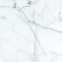 1348_Broad Foundation_1342_Material_Marble_Statuarietto