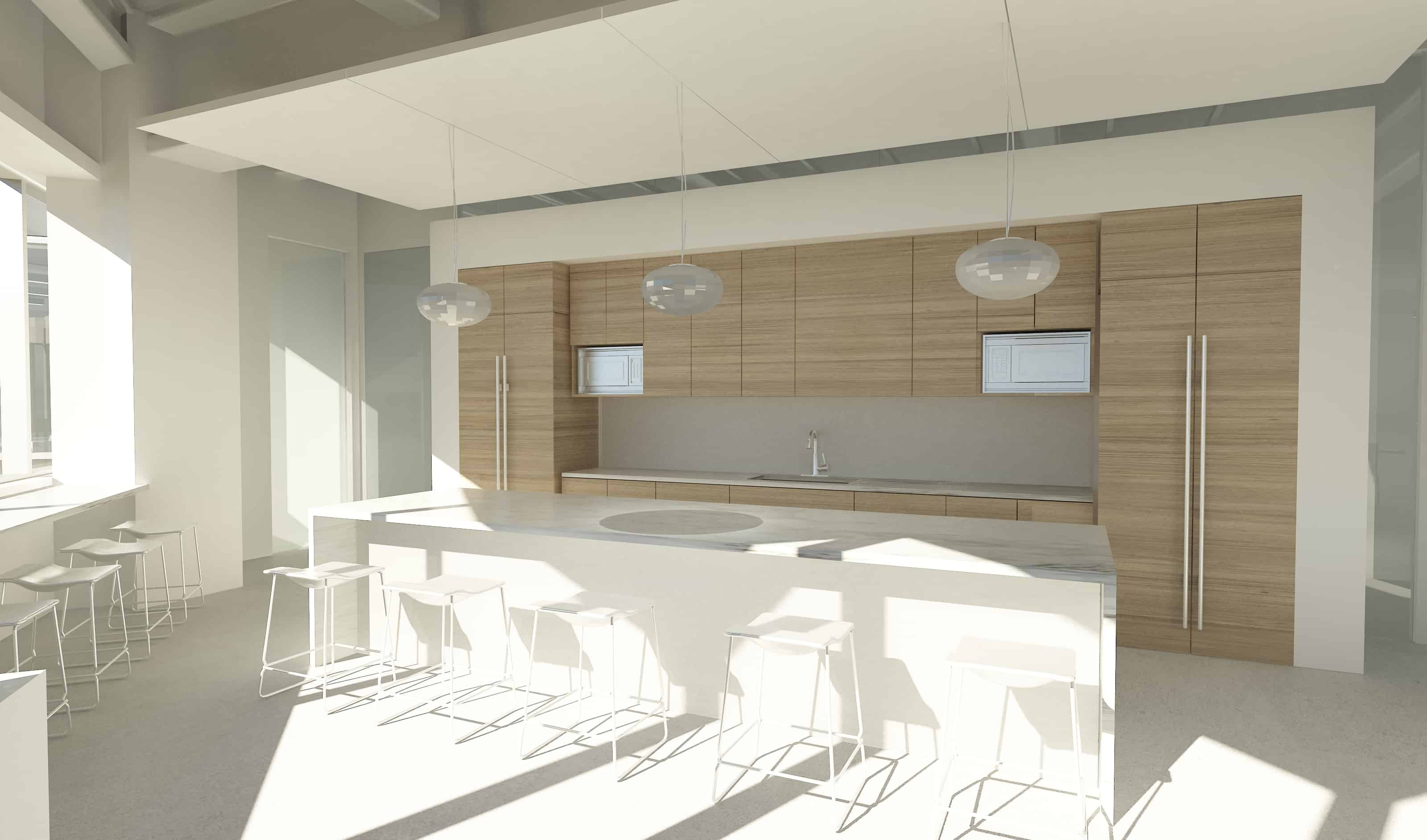 1348_Broad Foundation_KITCHEN TEST RENDER 2